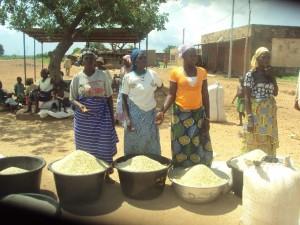 Des femmes étuveuses de riz de la vallée du Kou. Ph. B24