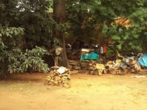Habitat d'un fou à Bobo Dioulasso.  Ph.B24