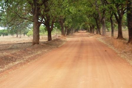 La nouvelle route partira de joindra Banfora à Sindou en passant par d'autres localités. Ph.B24