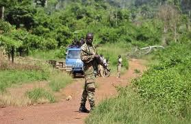 Patrouille militaire à la frontière Côte d'Ivoire-Liberia (ph:imatin.net)