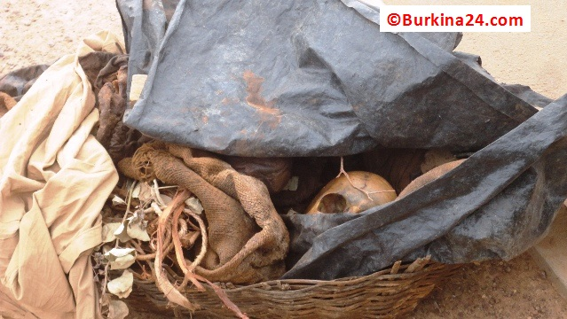 D'où peuvent bien provenir ces ossements ? (Ph : B24)