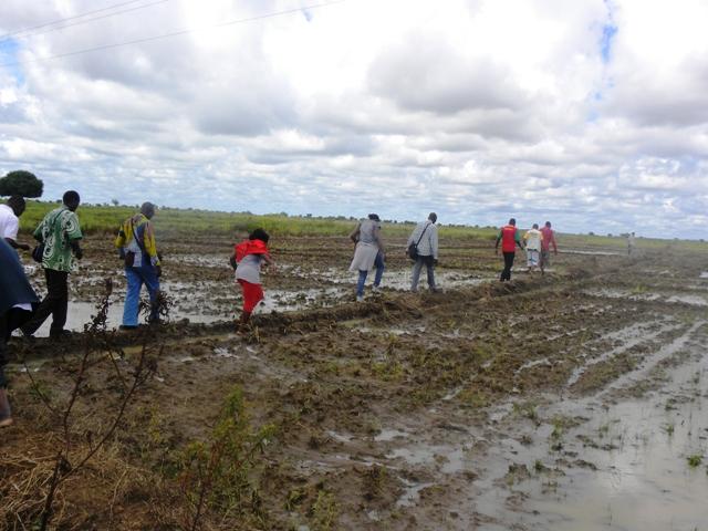 Les journalistes, riziculteurs d'une journée (Ph : B24)
