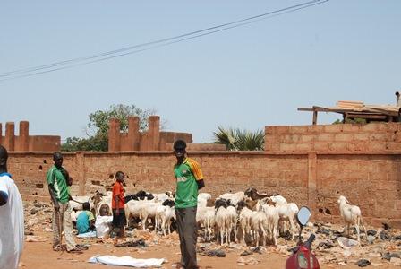 En plus de Sabani Kouanda, d'autres vendeurs prennent place au mur (Ph:B24)