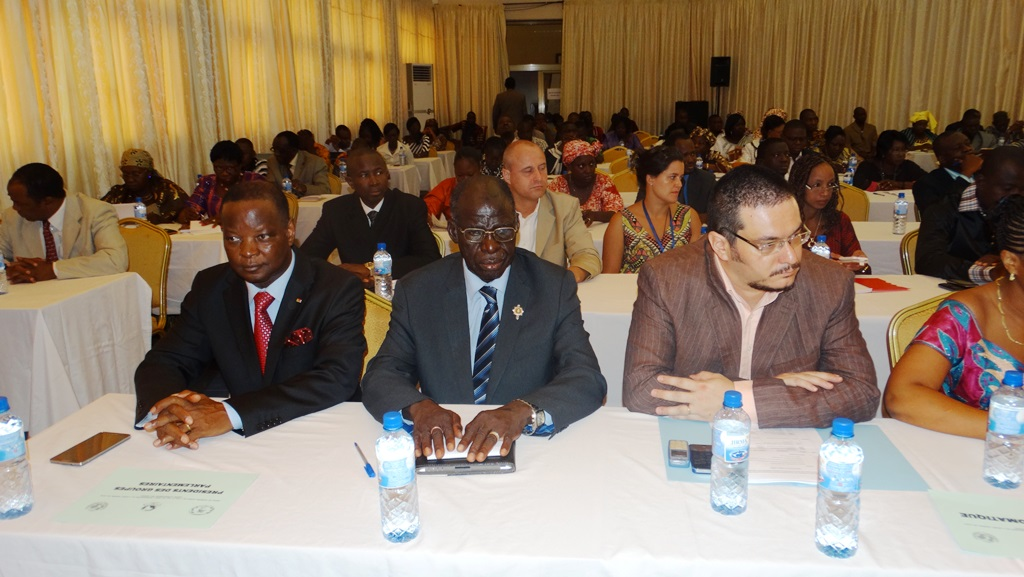 Plusieurs partenaires et acteurs du développement étaient présents.