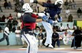 Youseikan Budo combat