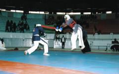 Yoseikan Budo : le Burkina abrite le 13ème championnat d'Afrique de l'Ouest