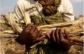 Madelena porte les restes de sa mauvaise récolte, Balaka, Malawi, juillet 2012. Photo : Amy Christian/Oxfam