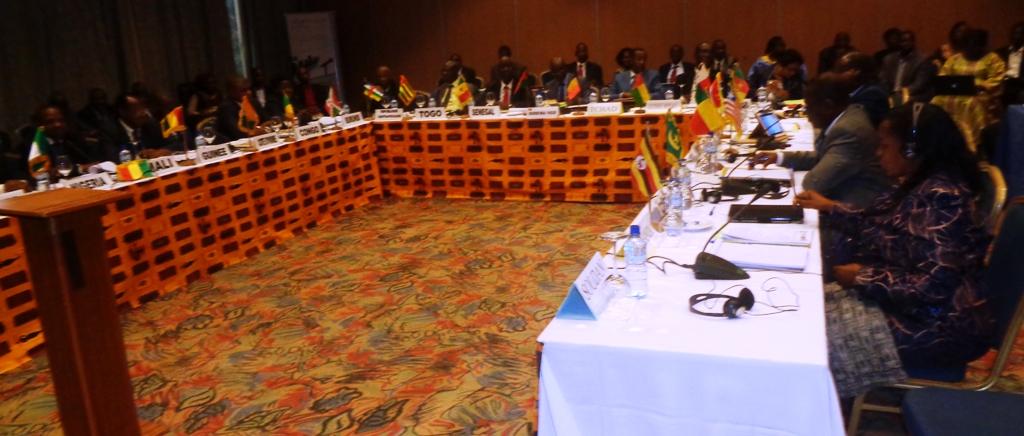 Le Conseil des ministres extraordinaire de EAA, ce lundi 23 février 2015 à Ouagadougou.