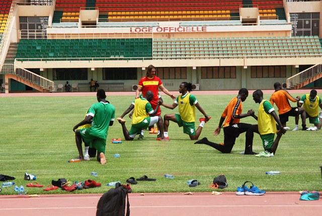 Quelques Etalons manquent à l'appel par suite de blessure  © Burkina24