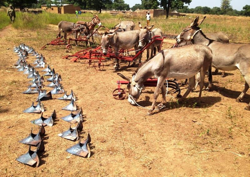 ... a fait don d'une valeur d'environ 4 millions FCFA à des femmes rurales.