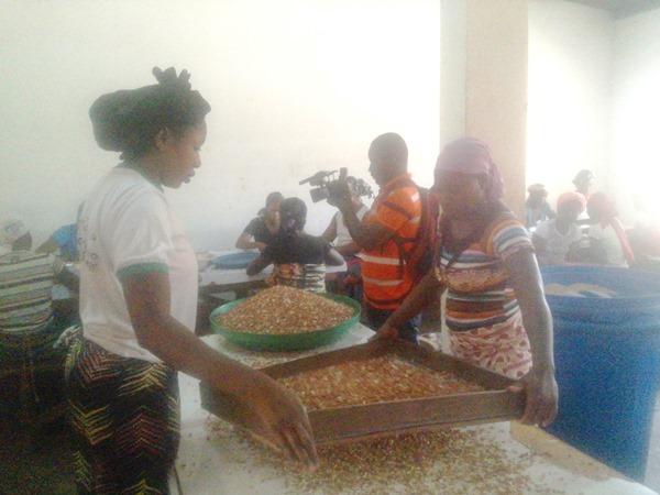 Avec l'appui d'Oxfam, AWB emploie plus de centaines de femmes